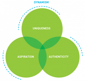 infographic dynamism, uniqueness, aspiration, authenticity