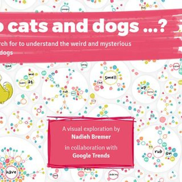 Why do cats and dogs? Understanding search terms for recruitment campaigns